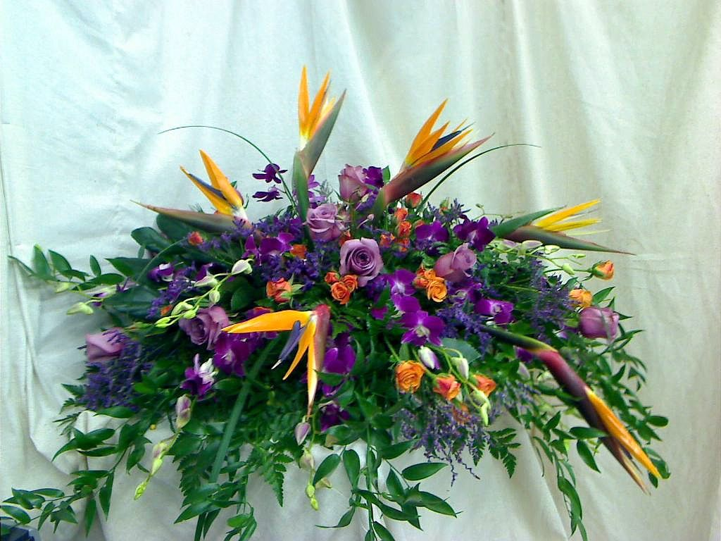 One of our beautiful casket covers birds of paradise orange spray one of our beautiful casket covers birds of paradise orange spray roses dendrobium izmirmasajfo Images