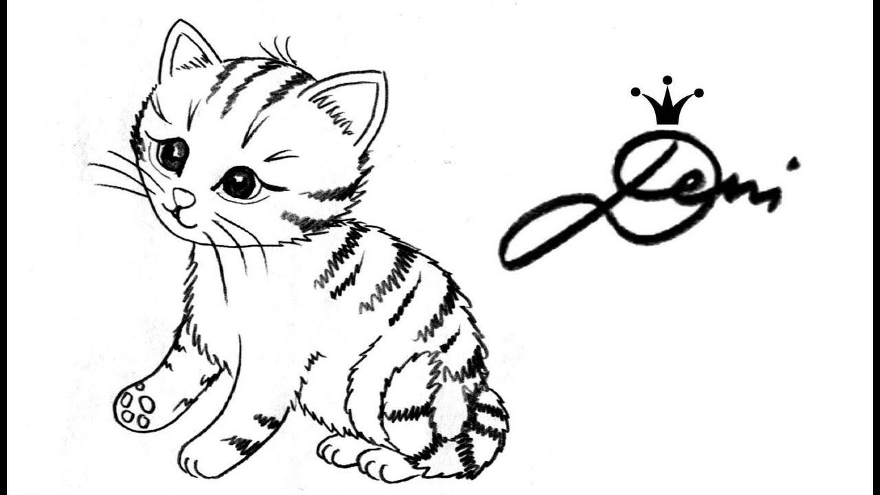 Pin Von Deni Zeichnet Auf Katze Zeichnen Lernen Katzen Malen Tiere Zeichnen Katze Zeichnen Katze Malen