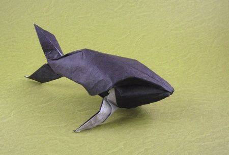 Origami Humpback Whale By Michael G LaFosse Wet Folded From A Square Of Double Sided Unryu Paper Gilad Aharoni On Giladorigami