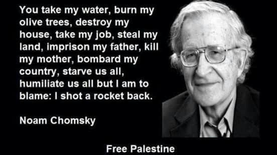 Noam Chomsky Quotes Pleasing Noam Chomsky Quotes On Palestine  Recherche Google  Unknown Facts .