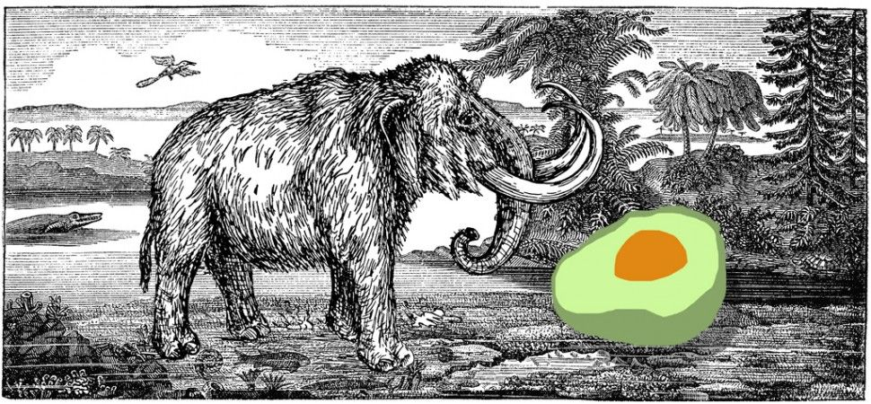 Food & Consequences Food for Monsters? Lucky peach