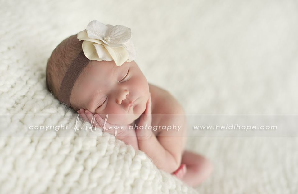 Sears Newborn Photography