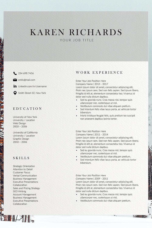 Professional CV Template InDesign Resume Template CV