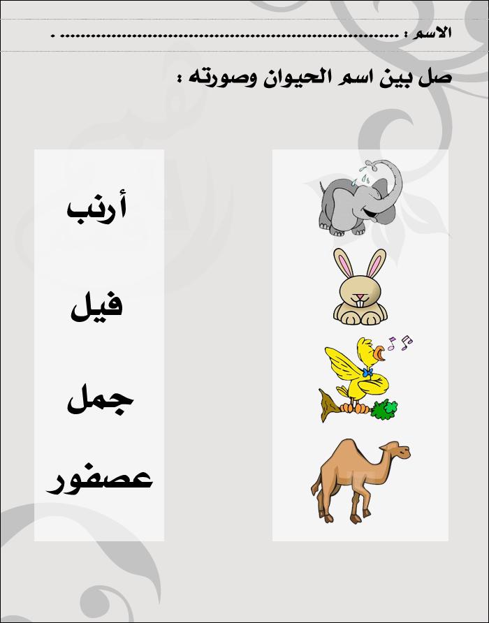 Animaux Learning Arabic Arabic Kids Alphabet Preschool
