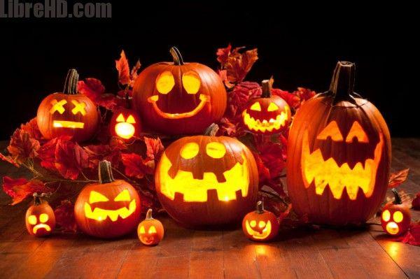 Geniales imagenes de halloween para compartir hd gifs imagenes geniales imagenes de halloween para compartir hd gifs imagenes divertidas thecheapjerseys Choice Image
