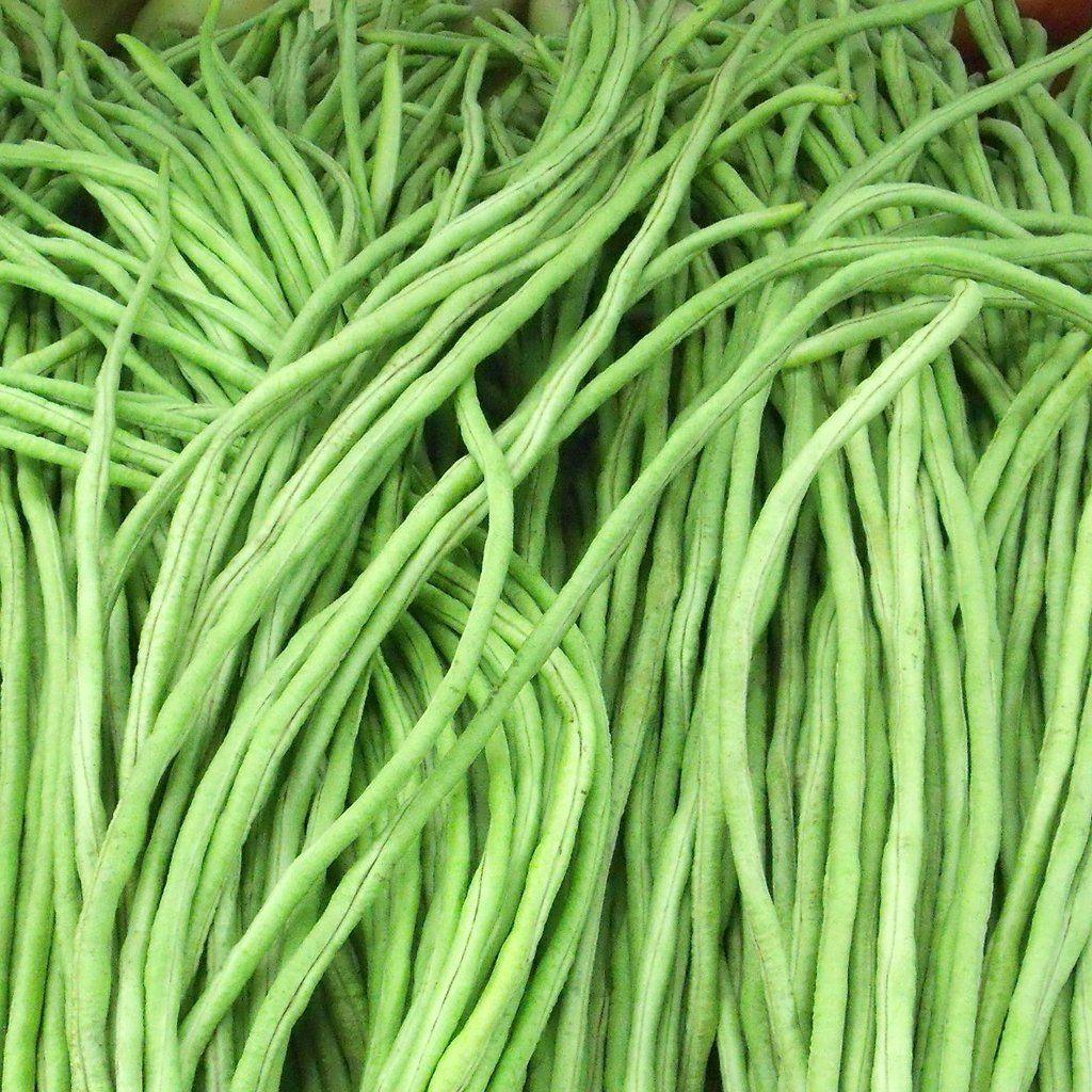 Bean Yard Long Green Noodle Vigna Unguiculata Subsp Sesquipedalis Long Bean Asparagus Beans Chinese Long Beans