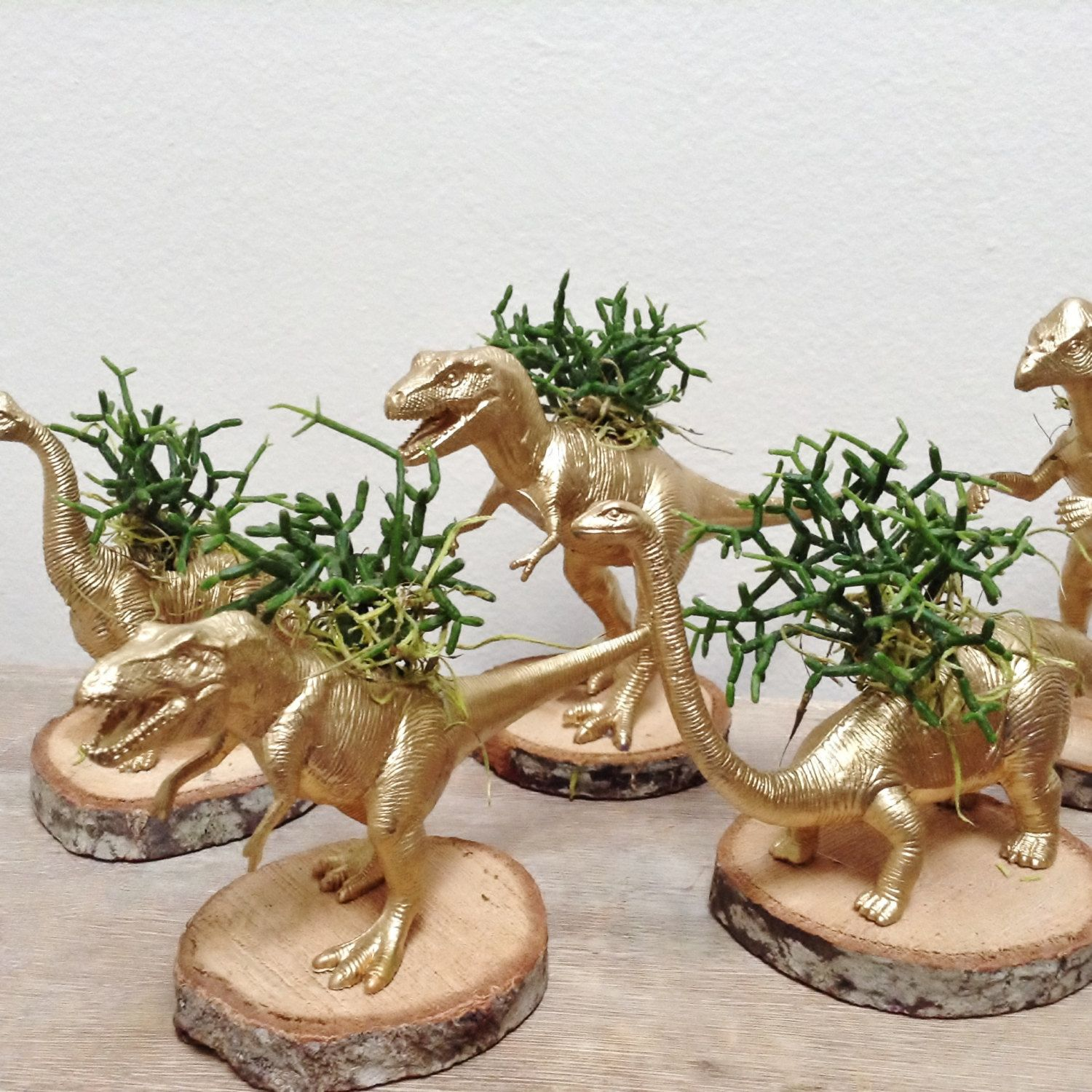 Brooke Ner With Gold Painted Dinosaur Planters She Creates In Her Portland Apartment S