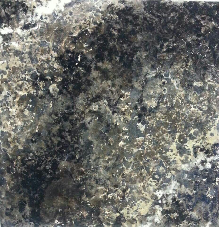 Ay Black Pearl Mica Chocolate Brown White Limestone And Inca Gold Giani Granite Countertop Paint