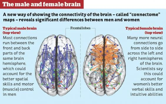 The Hardwired Difference Between Male And Female Brains Could Explain Emotion Chart Brain Facts Types Of Intelligence