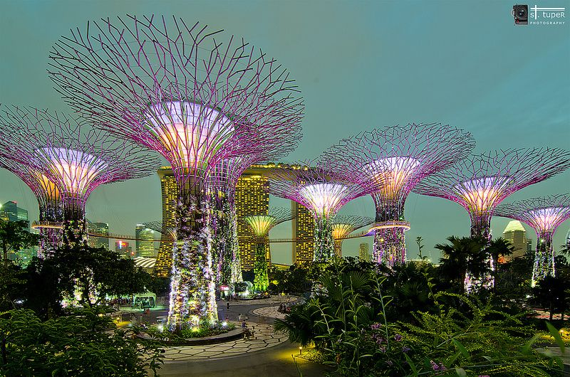 f87edfbf0c772e25dced41f08abf7906 - Gardens By The Bay If Raining