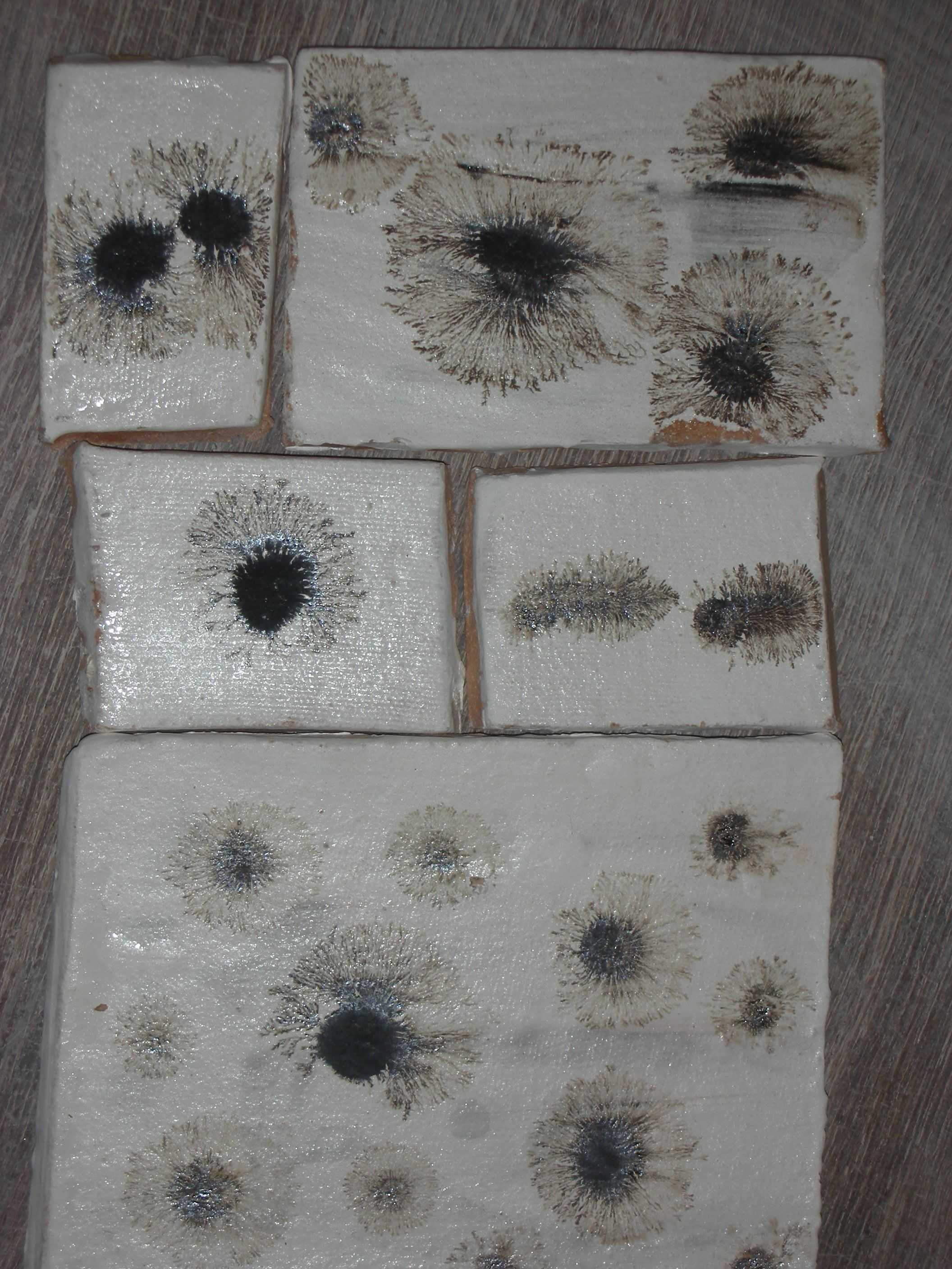 Glazed ceramic tiles using manganese oxide and vinegar placed on glazed ceramic tiles using manganese oxide and vinegar placed on wet slip created this fern dailygadgetfo Gallery