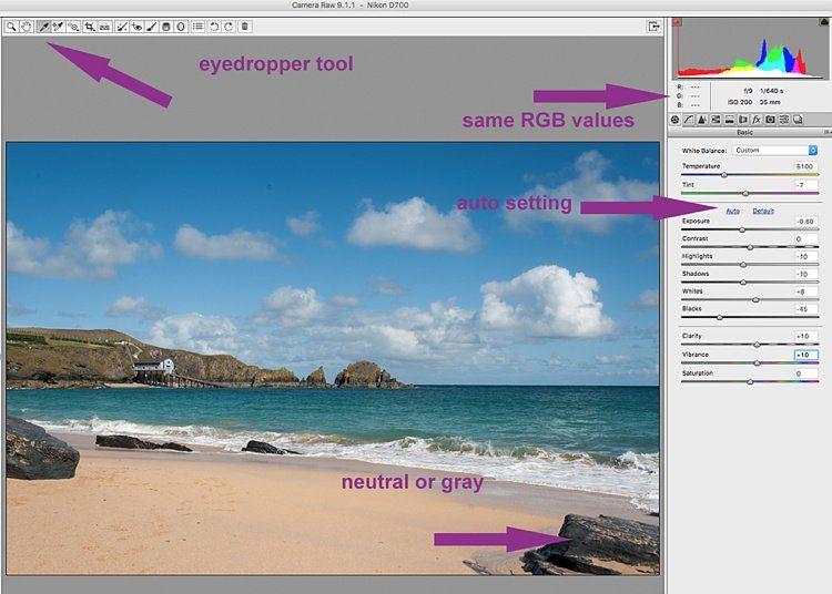 5 Starter Steps to Batch Processing using Adobe Bridge