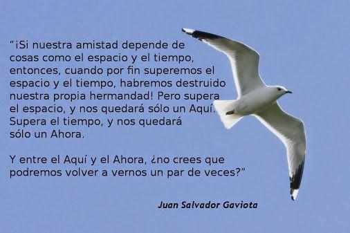 Richard Bach Juan Salvador Gaviota Juan Salvador Gaviota