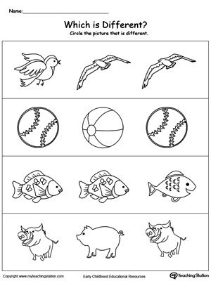 Identify Which Picture Is Different Preschool Worksheets Nursery Worksheets Kids Math Worksheets