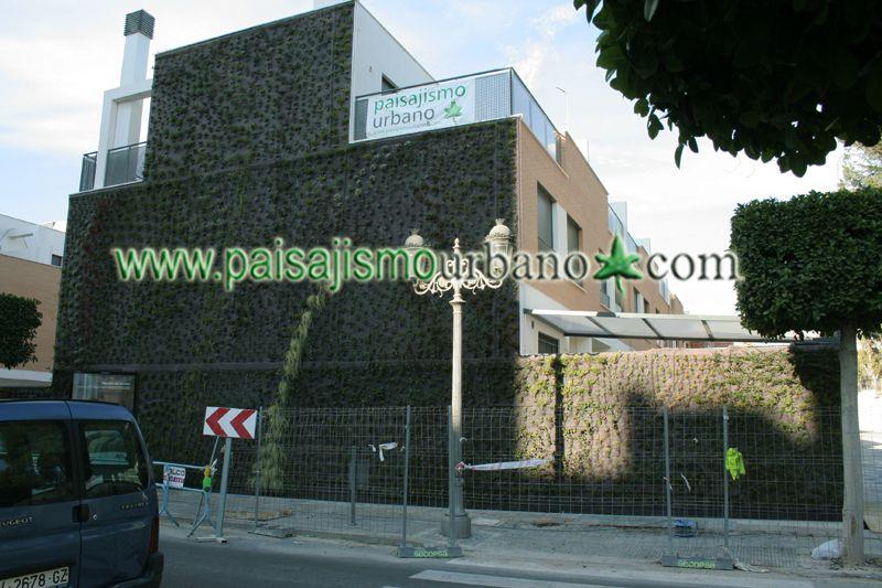 Fachada vegetal en paterna realizada con el sistema for Jardines verticales construccion