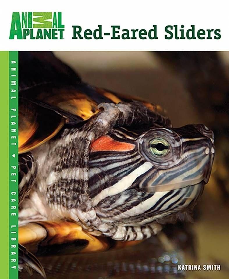 Animal Red Eared Sliders Red eared slider, Animal