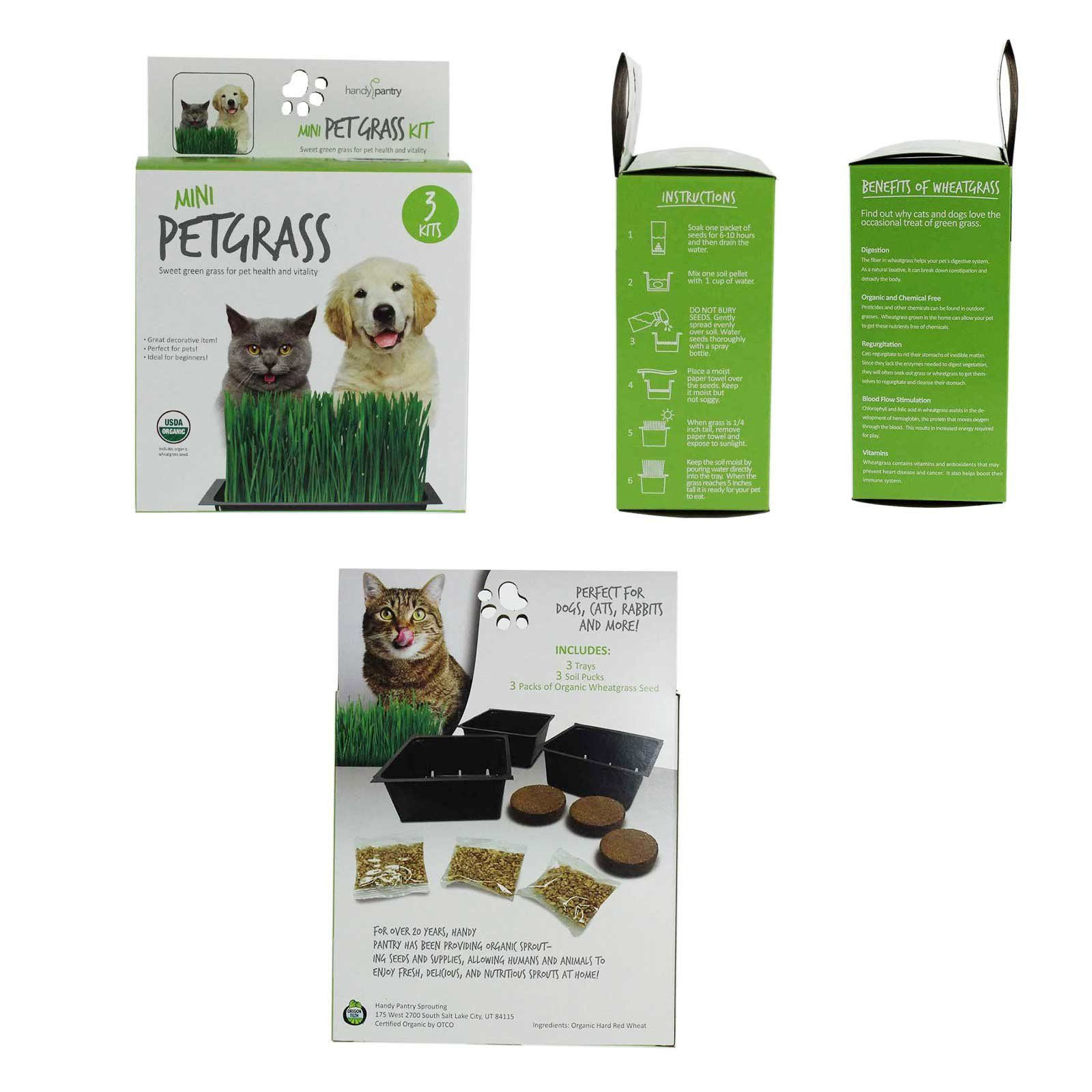 Wheatgrass Kits Mini Organic Pet Grass Kit Grow Wheatgrass For Pets Dog Cat Bird Rabbit More Includes Trays Soil Wheat Grass Seeds Instru With Images Organic Pet Products