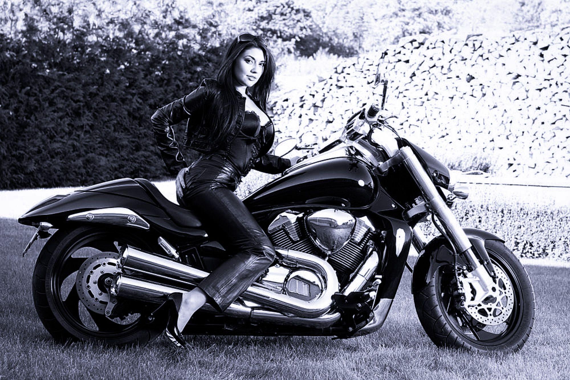 suzuki m1800r intruder suzuki intruder motorcycle. Black Bedroom Furniture Sets. Home Design Ideas