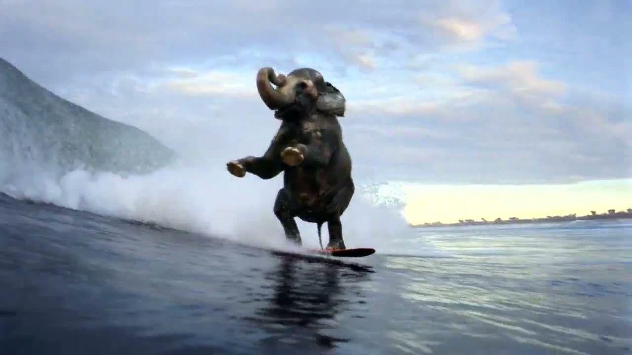 Accenture Surfing Elephant 600 63935 Jpg 1 280 720 Pixel