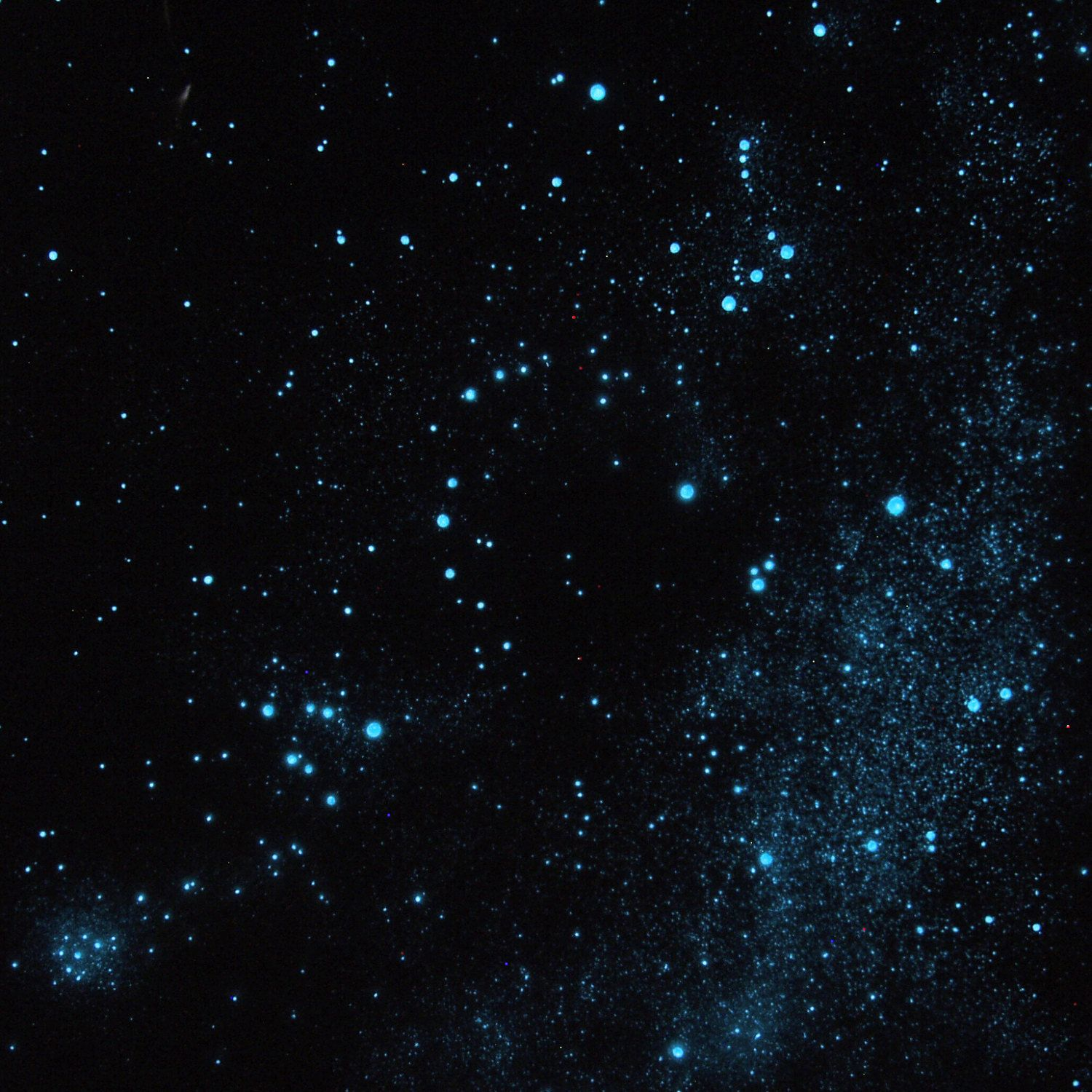 Uncategorized Star Ceiling Paint diy starry ceiling google search g dbd pinterest glow in the dark hunter and bull orion taurus pleiades cluster constellation star poster glo