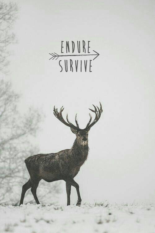 """sobrevivir""......"