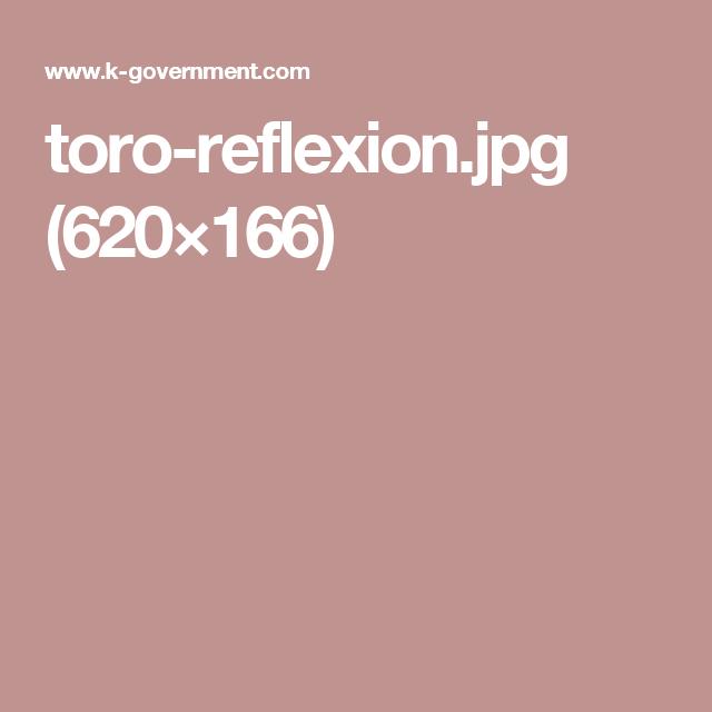 toro-reflexion.jpg (620×166)