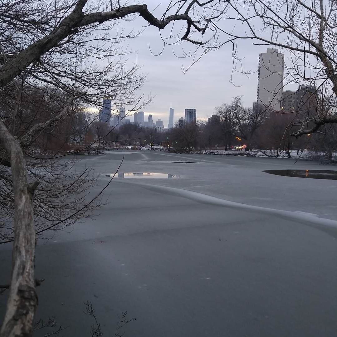 #NorthPond #Nature #Sanctuary #LincolnPark #Chicago  #City #Skyline #NoFilter #January #2016