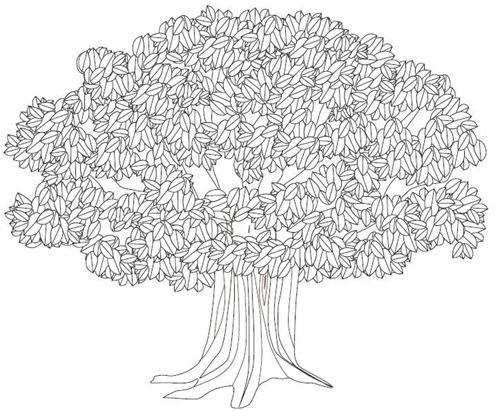 Resultado de imagen de arboles para colorear con raices | pin ...