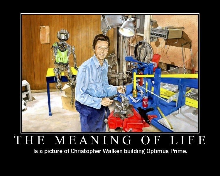 The Meaning Of Life Funny Memes Meaning Of Life I Love Him Walken