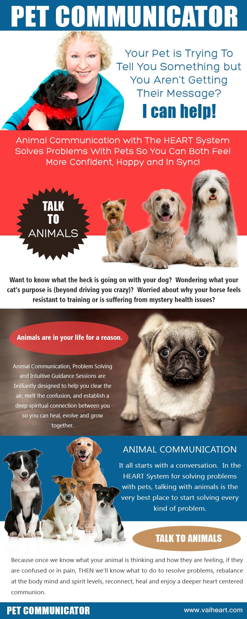 Pet Communicator Animals, Your pet, Pets
