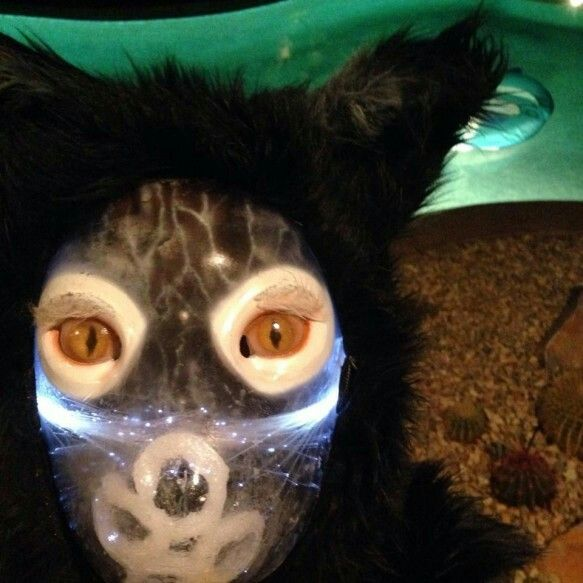 Galantis - You | Galantis Mask | Pinterest