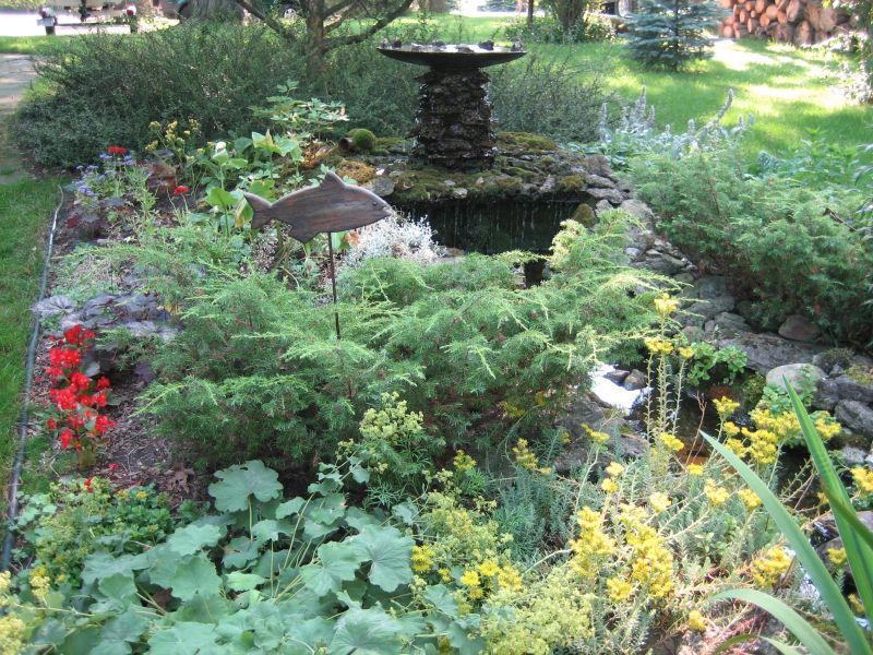 Carol S Garden: Another Awesome View Of Carol's Garden Pond
