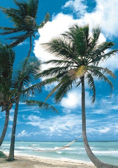 #Karibik und #Antillen