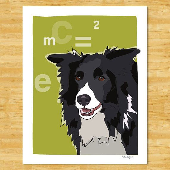 Border Collie Art Print Einstein Border Collie Gifts Dog Art