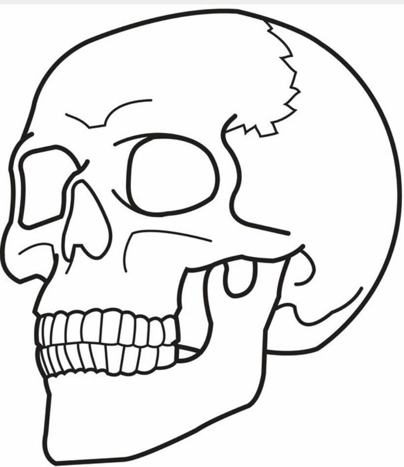 Pin de Philip Tonks en Skulls | Pinterest
