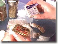 7 cosas que debe saber sobre la arcilla del polímero traslúcido para la Toma de la joyería del grano  3   1