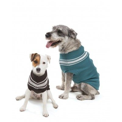 Olive - Track Jacket for Dogs l West Paw Pro Zip
