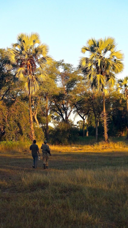 Victoria Falls (MosioaTunya) National Park National