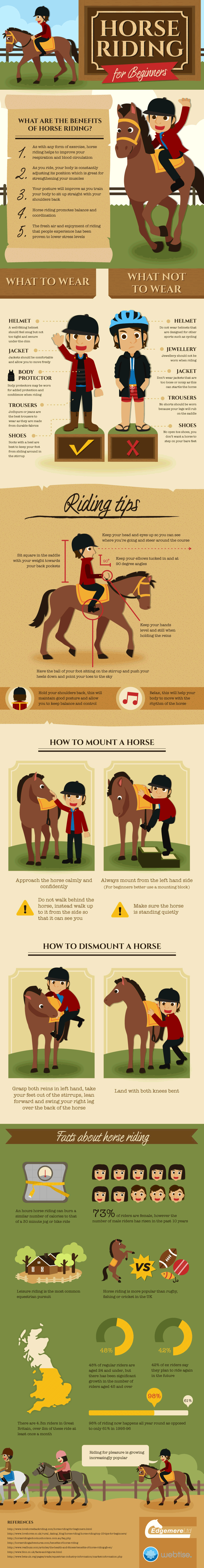 This infographic tells you a lot that you need to know as a new rider. Find out the correct riding position, how to mount and dismount a horse, etc.