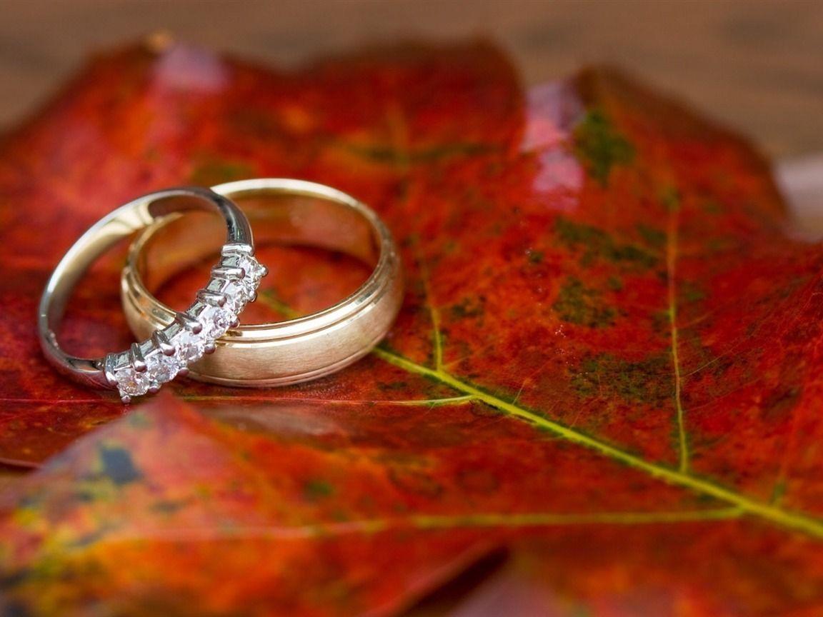 Romantic Wallpapers Crazy Frankenstein Wedding Ring Shots Fall Rings Wedding Rings
