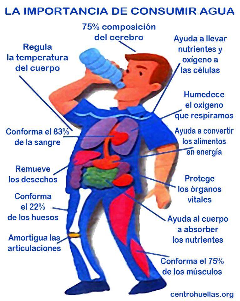 La Importancia De Consumir Agua Conforma El 75 Del Cerebro Conforma El 75 De Los Músculos Co Beneficios De Beber Agua Salud Importancia Del Agua