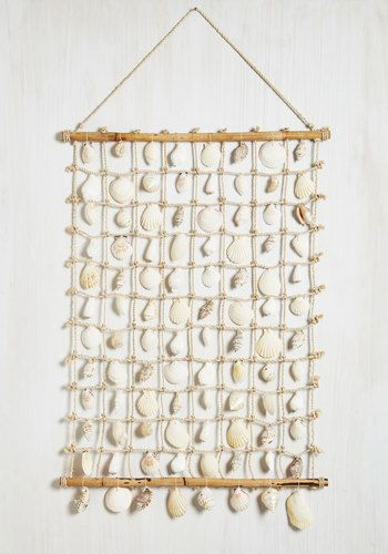 Cast A Shell Wall Decor Nautical Better White Tan Cream Diy Inspo With The Shells I Ve Collected Over Years