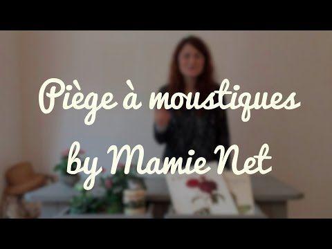Piege A Moustiques Ecologique Moustiques Pinterest Remede