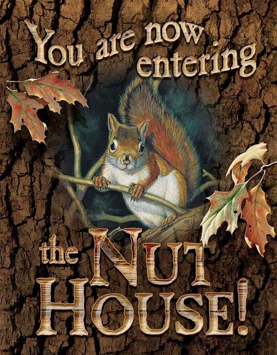 You Are Now Enter The Nut House With Images Nut House Squirrel Tin Signs