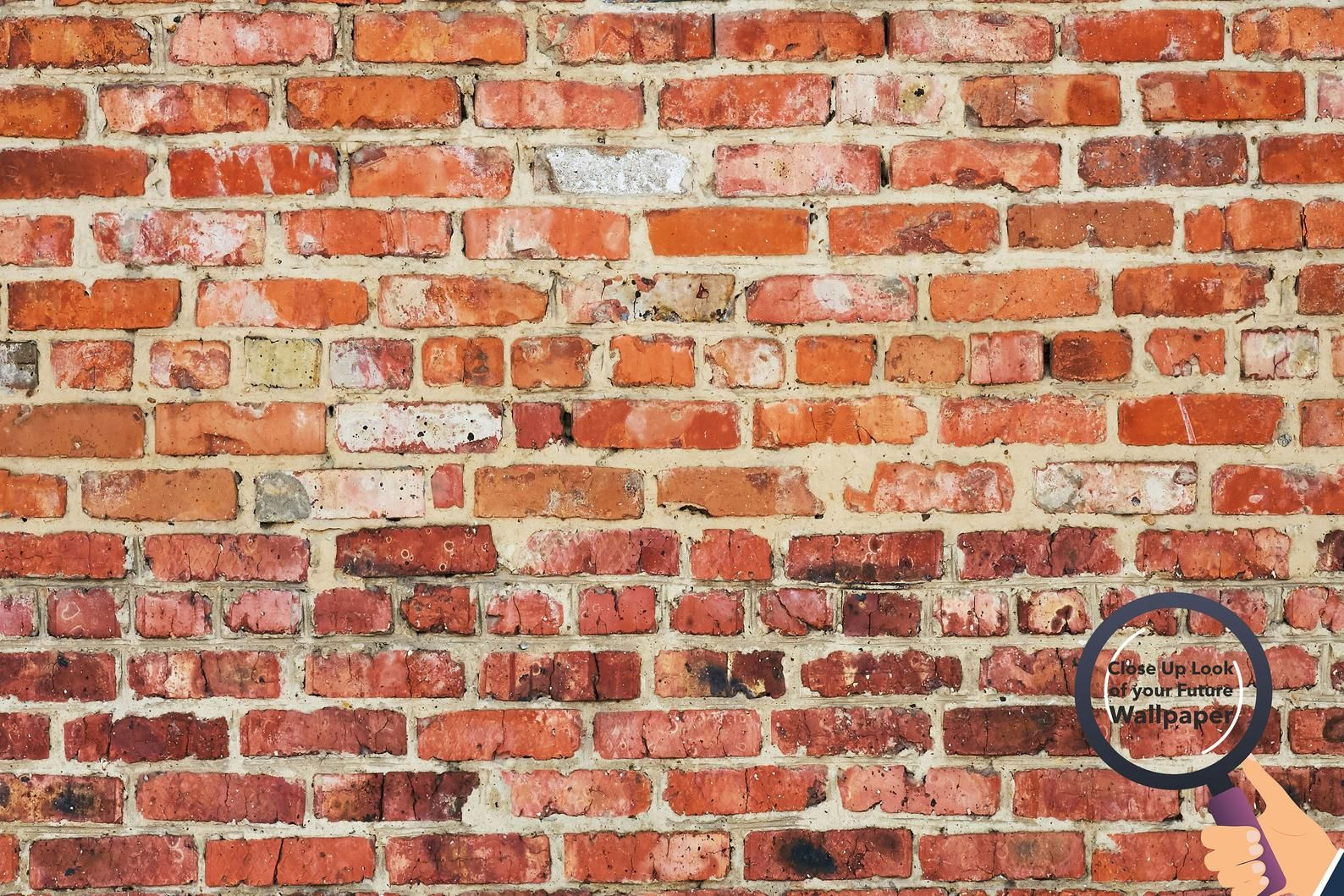 Red Brick Wall Texture Wallpaper Rustic Texture Brick Peel And Stick Self Adhesive Wallpaper Murals By Welovewallz In 2020 Textured Wallpaper Red Bricks Textured Walls