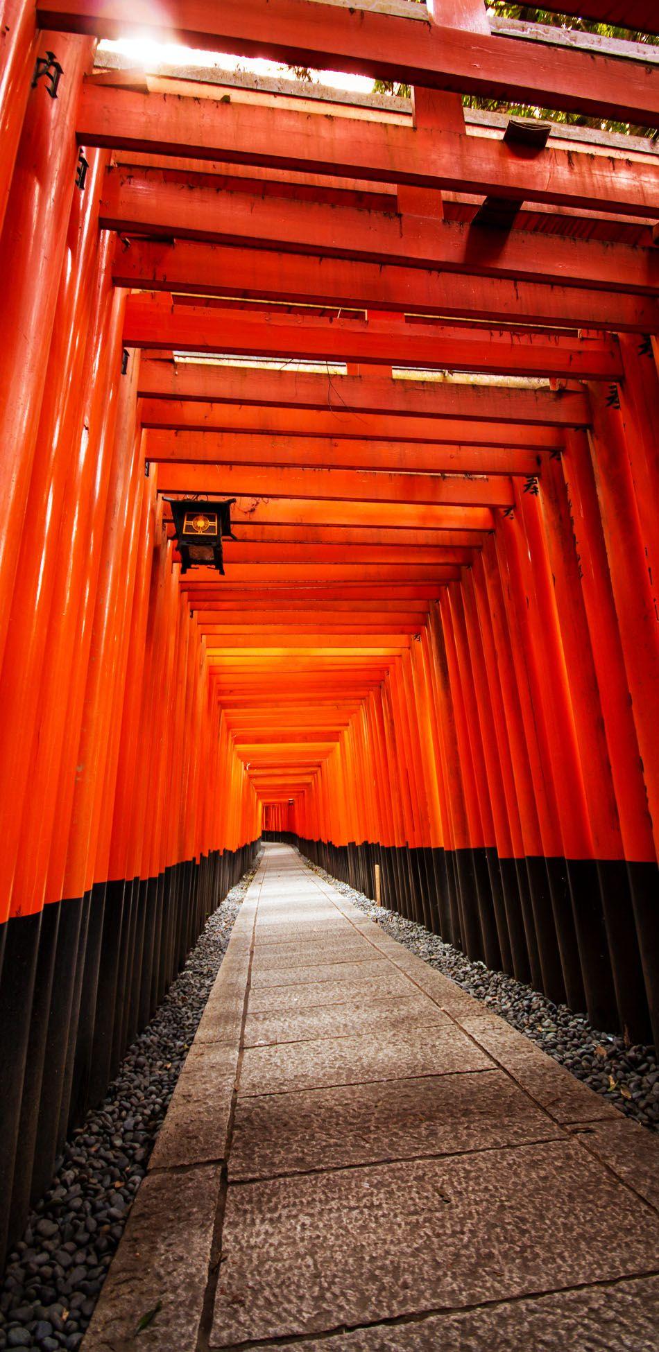 Famous Pathway of 1000 Gates at Fushimiinari Taisha Shrine, Kyoto, Japan | 19 Reasons to Love Japan, an Unforgettable Travel Destination