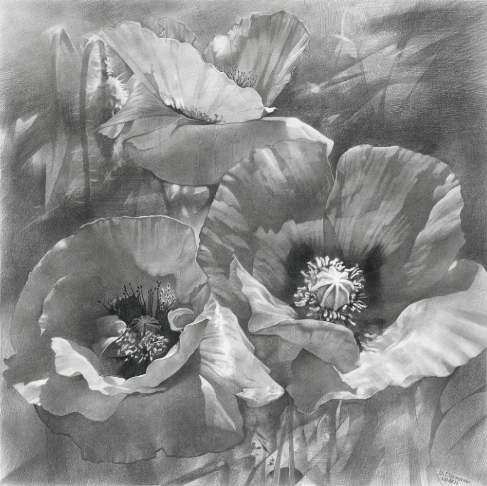 Рисунок карандашом – 41 фотография   Работы, выполненные ...