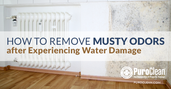 How To Remove Musty Odors After Experiencing Water Damage