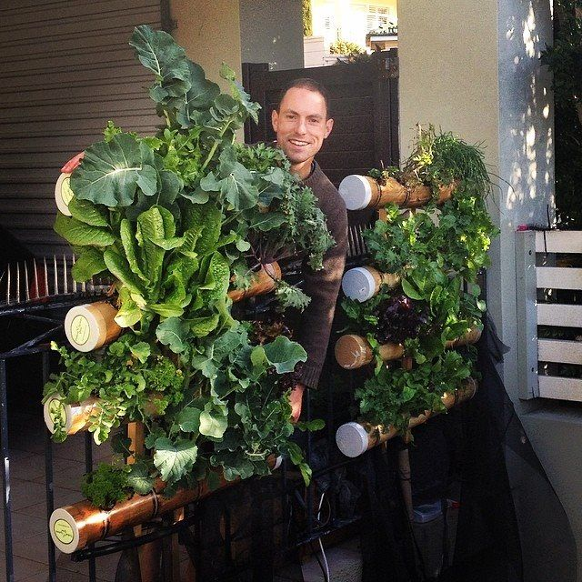 Vertical Gardening Systems Bamboo Balcony Gardens