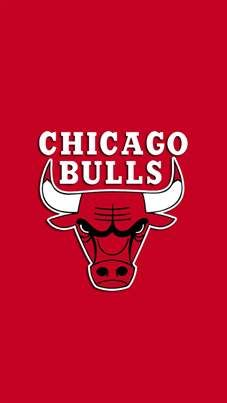Personalized//Customized Chicago Bulls Name Poster Wall Art Decoration Banner